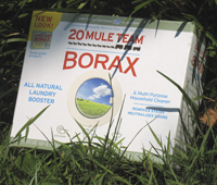 photo of box of 20 Mule Team Borax