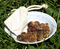 photo of soap nuts loose in a dish plus a laundry bag full of them