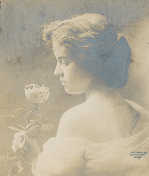 An American Beauty, 1906 postcard