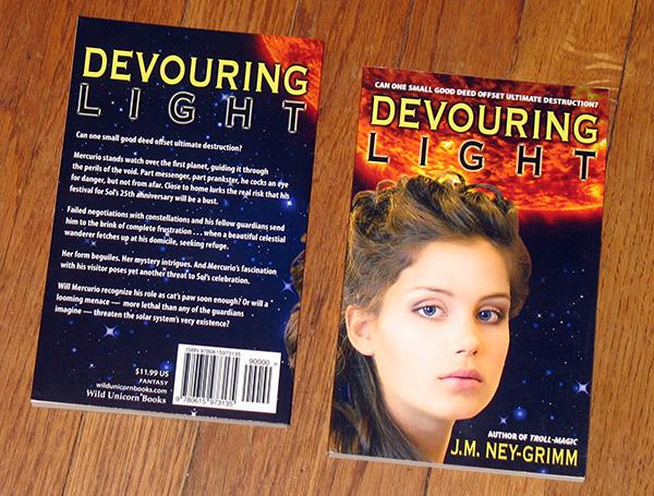 D Light paperback