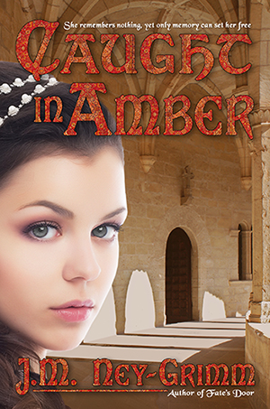 Amber cover 300